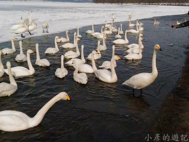 S_Snow_1102