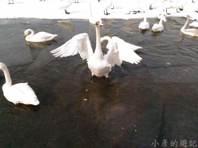 S_Snow_1118