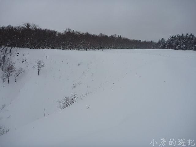S_P1230059