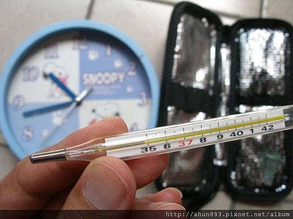 胰島素保溫袋測試