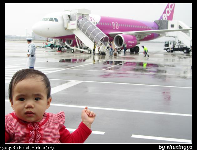 130328 a Peach Airline (18)