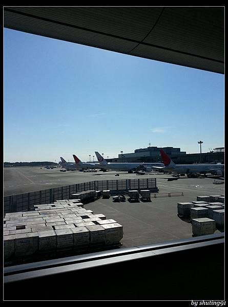131114 c 東京成田機場 (3).jpg