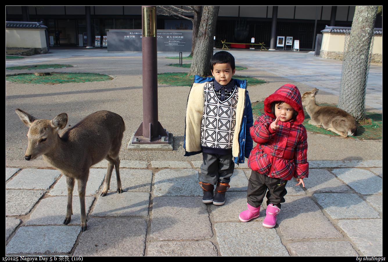 150125 Nagoya Day 5 b 奈良 (116).jpg