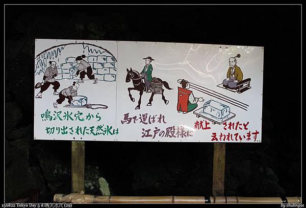 150822 Tokyo Day 5 d 鳴沢冰穴 (29).jpg