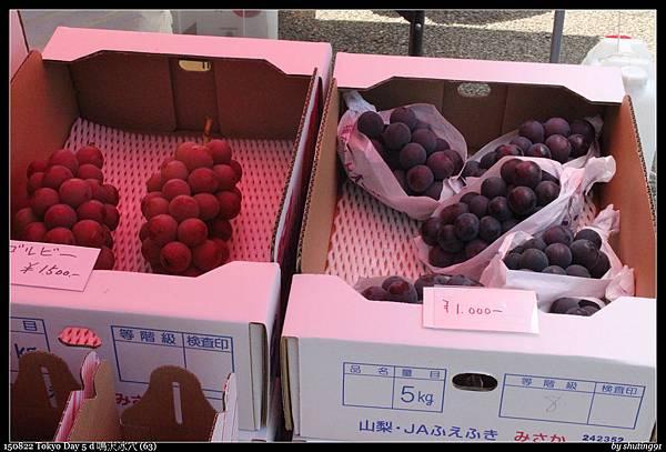 150822 Tokyo Day 5 d 鳴沢冰穴 (63).jpg