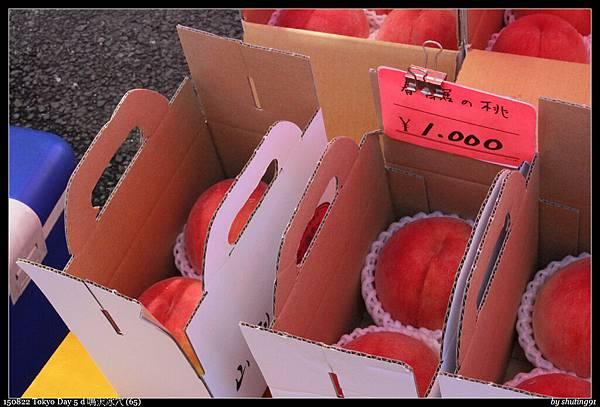 150822 Tokyo Day 5 d 鳴沢冰穴 (65).jpg