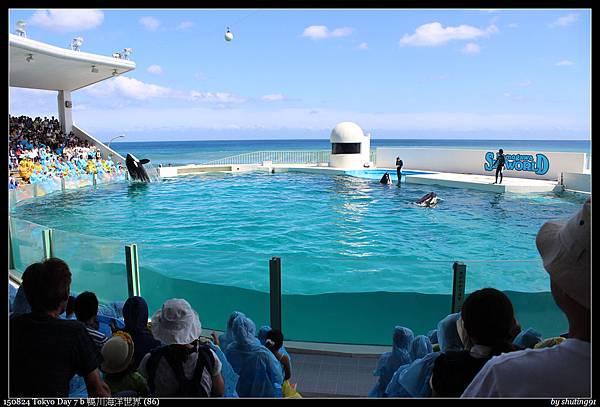 150824 Tokyo Day 7 b 鴨川海洋世界 (86).jpg