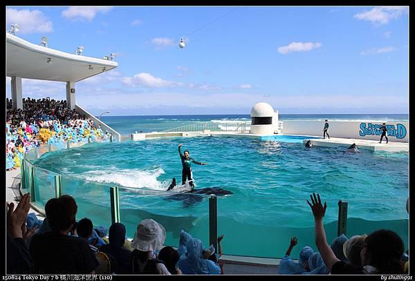 150824 Tokyo Day 7 b 鴨川海洋世界 (110).jpg
