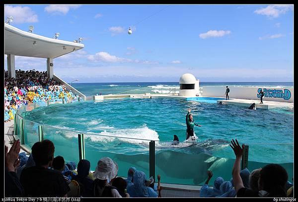 150824 Tokyo Day 7 b 鴨川海洋世界 (114).jpg