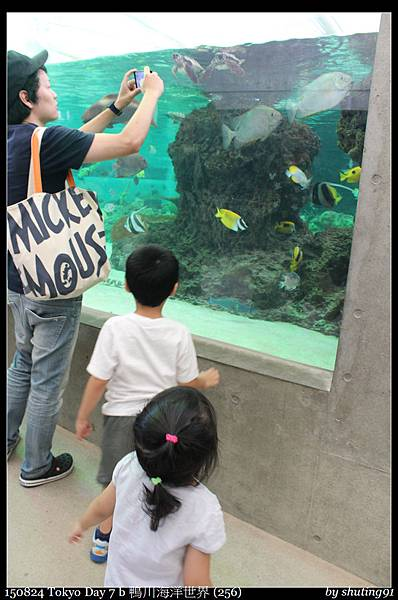 150824 Tokyo Day 7 b 鴨川海洋世界 (256).jpg