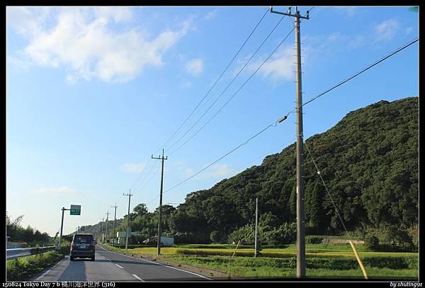 150824 Tokyo Day 7 b 鴨川海洋世界 (316).jpg