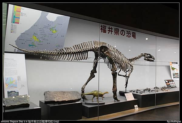 160202 Nagoya Day 2 a 福井縣立恐龍博物館 (115).jpg