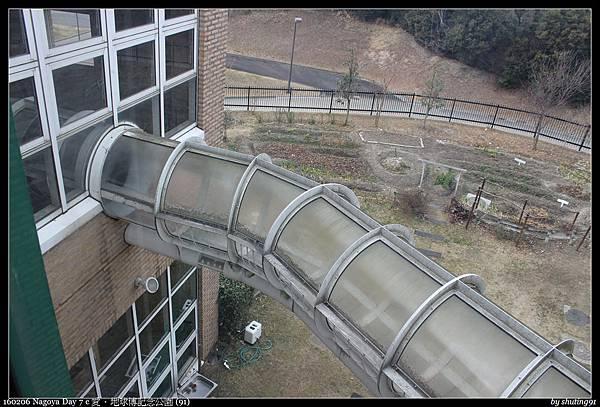 160206 Nagoya Day 7 c 愛・地球博記念公園 (91).jpg