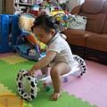 這個滾筒玩具好好玩,跟乳牛一樣的斑紋我也認得喔!
