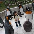 被企鵝們包圍了