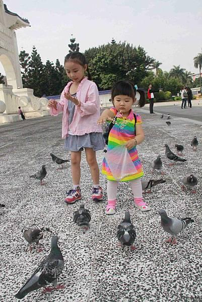 和小小阿姨一起餵鴿子