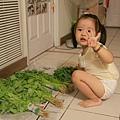 颱風天菜好貴~小安安也要來買菜了!