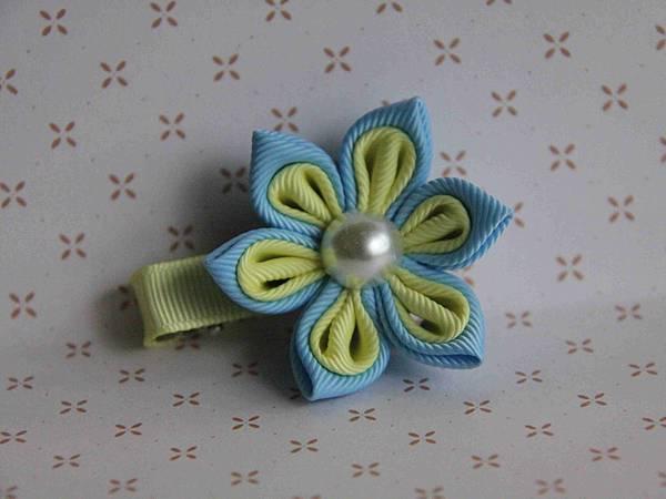 雙色珍珠花-黃藍色