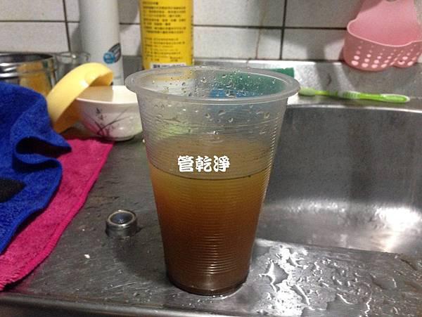 shinchubudi001.jpg