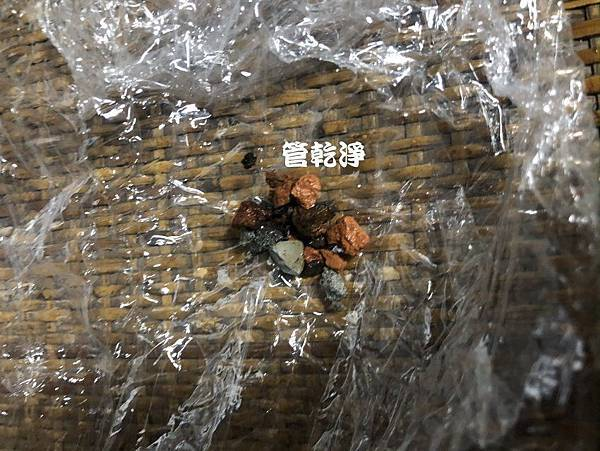 taoyunzhongshan001.jpg