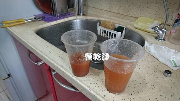 taoyuanlizi001.jpg