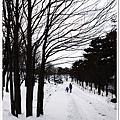 D0568_2011Dec北海道.jpg