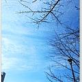 S697_2012京阪神之旅.jpg