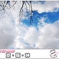 S864_2012京阪神之旅.jpg