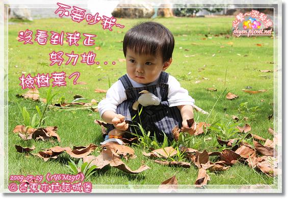 IMG_4262_1.jpg
