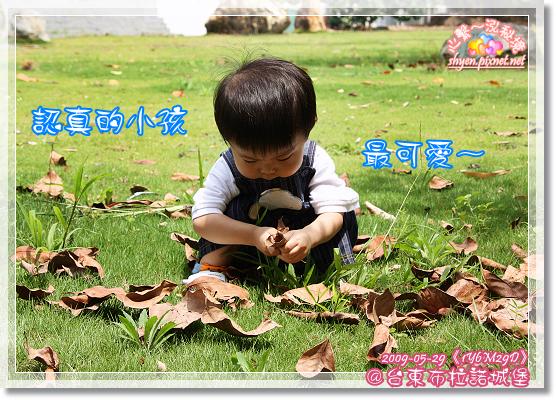 IMG_4261_1.jpg