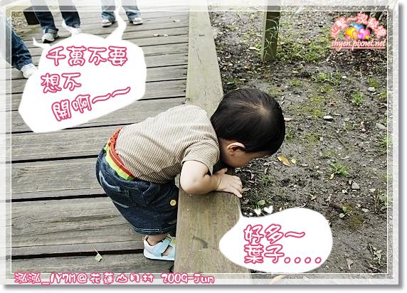IMG_5439_1.jpg