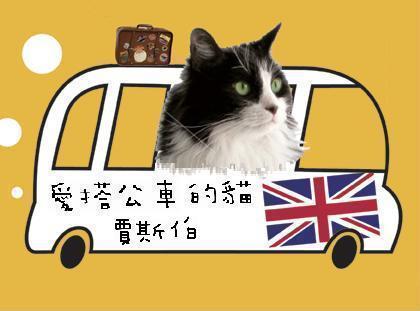 02愛搭公車的貓