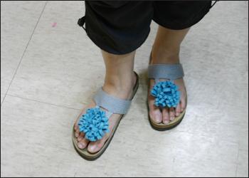 拖鞋花-1.jpg