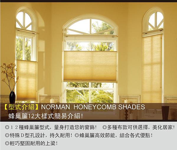 蜂巢簾20140611-10