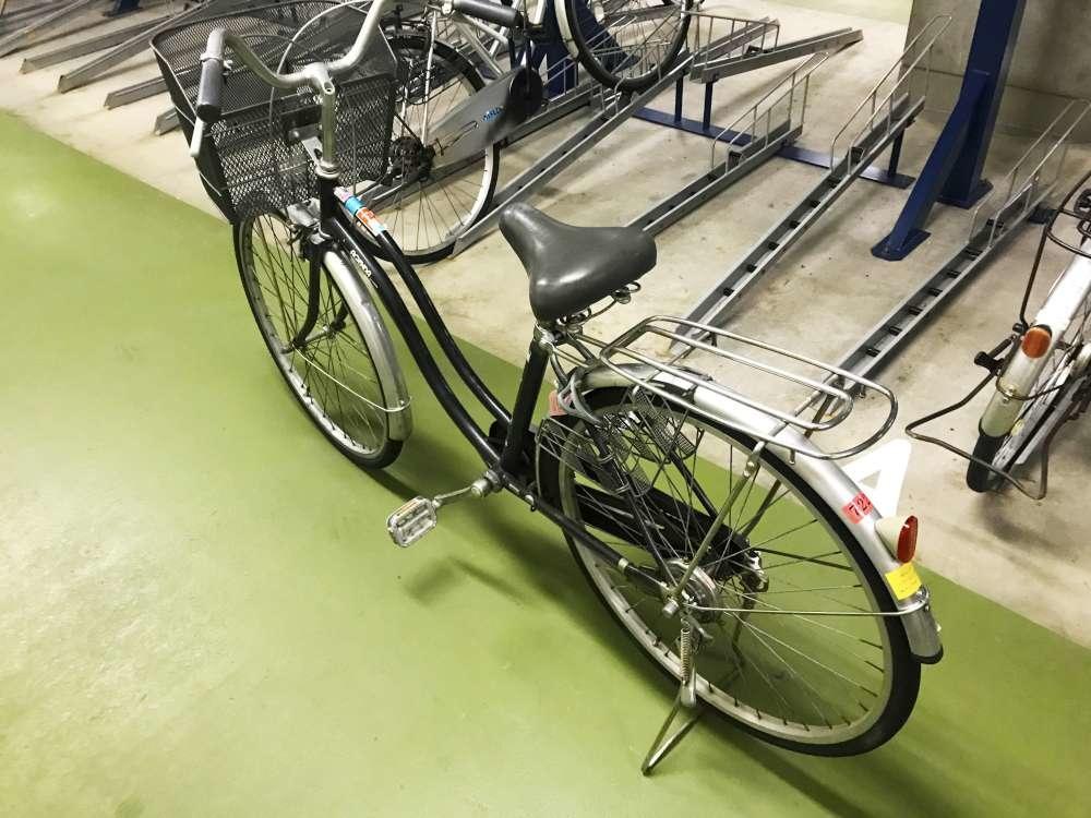 Niigate_Bike_10-1000.jpg