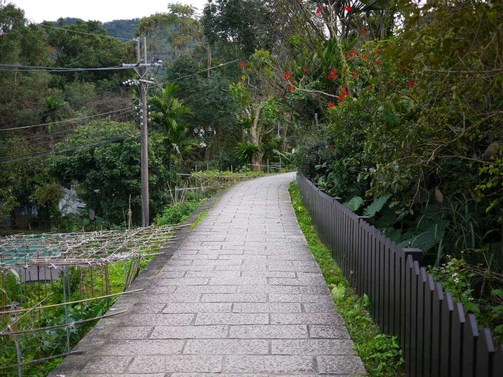 樟樹步道_04-1000.jpg