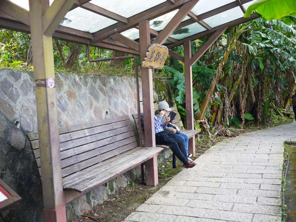 樟樹步道_09-1000.jpg