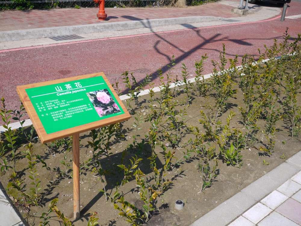 竹東台泥公園_17-1000.jpg