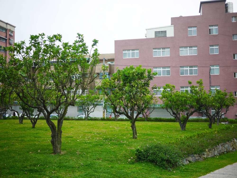 楊梅柚子公園_26-1000.jpg