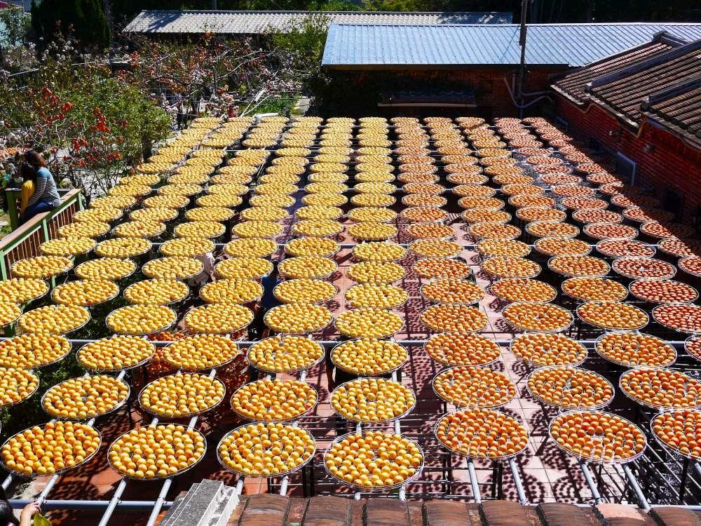 金漢柿餅-4-1000.jpg