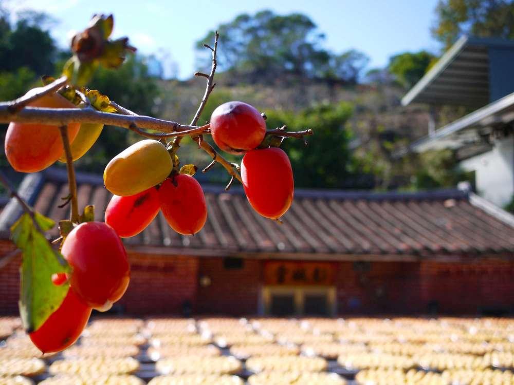 金漢柿餅-13-1000.jpg