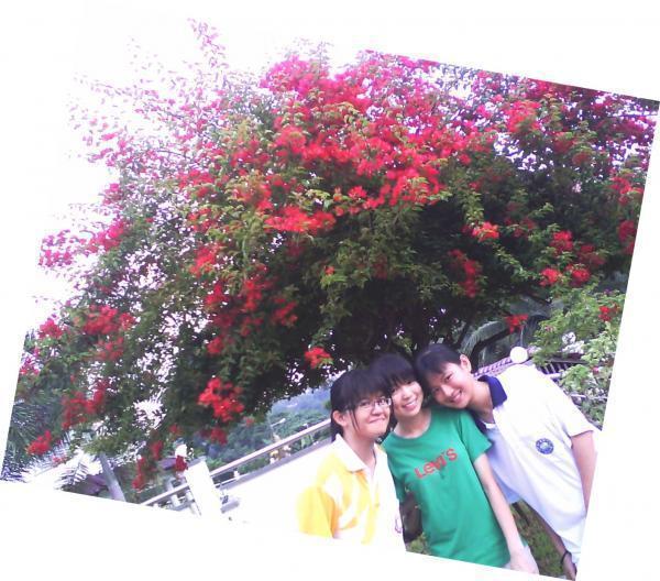 爱在樱花树下  =D