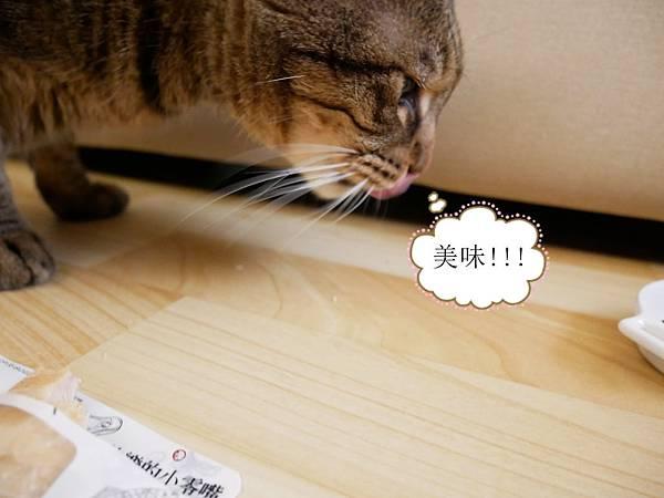 P1210733_副本.jpg