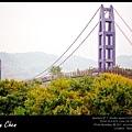 永興吊橋-台南楠西