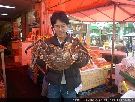 超大的帝王蟹~~重達3.7公斤