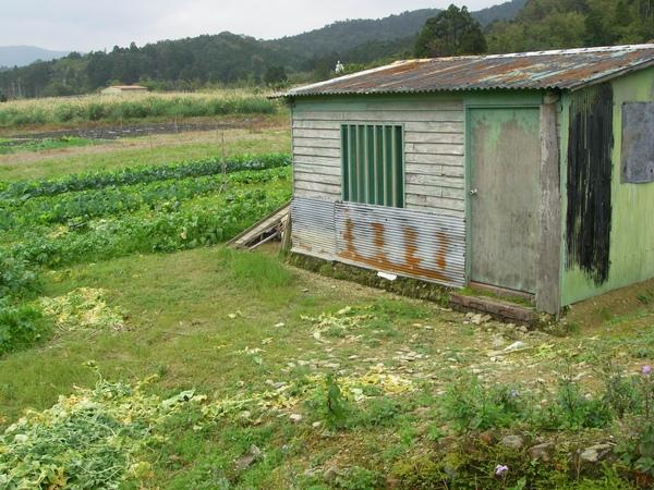 雙連埤旁的小屋