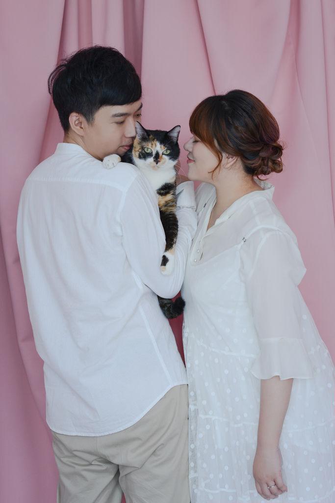 婚攝琪琪小姐 台北婚紗攝影 貓咪婚紗 貓奴婚紗