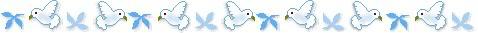 bird017.jpg