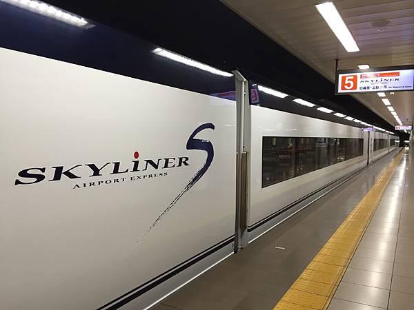 SkyLiners.jpeg