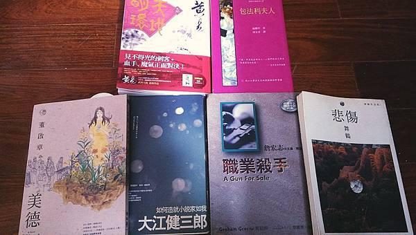 《職業殺手》《悲傷》《美德》《如何造就小說家如我》《包法利夫人》《天地明環》卷16.jpg